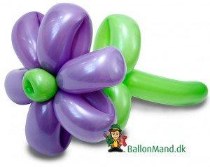 Et av vores fine ballondyr - Flot ballonblomst som ballonmændene laver dem