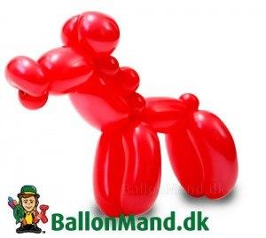 ballon-hest