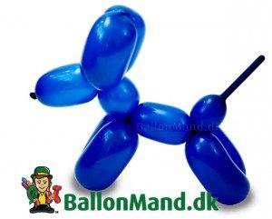 ballon-hund